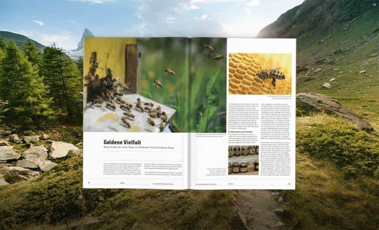 Traumhafter Talblick: Das Gästemagazin des Tannheimer Tals lädt zum Urlauben ein
